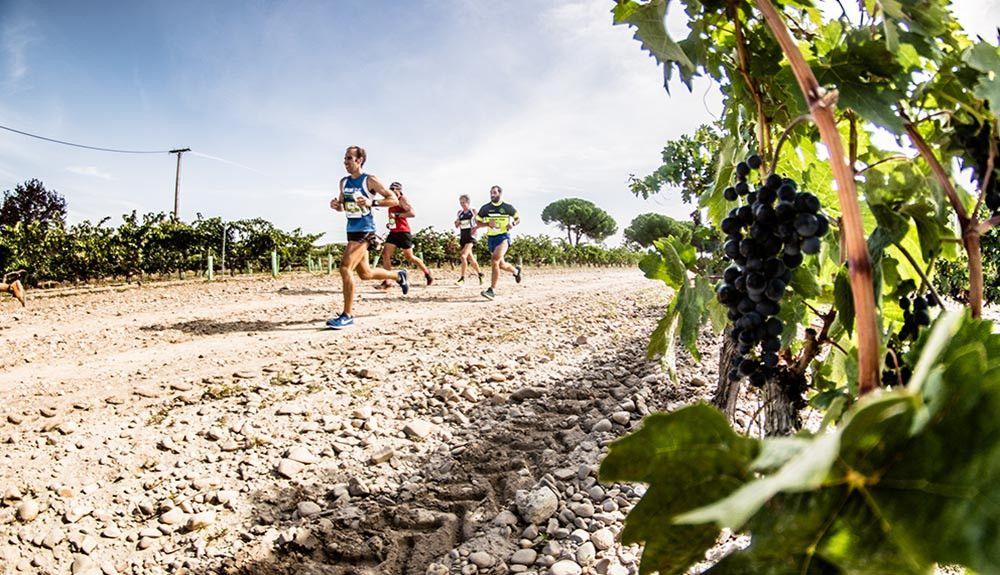 Un brindis por Ribera Run Experience