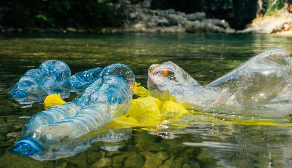 El respeto del entorno es tema básico en la Educación Ambiental