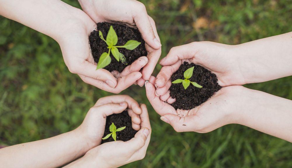 Una buena Educación Ambiental es la base de nuestro futuro en este Planeta
