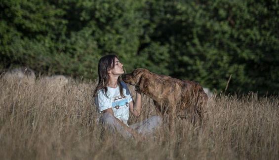 Sofía y lobo