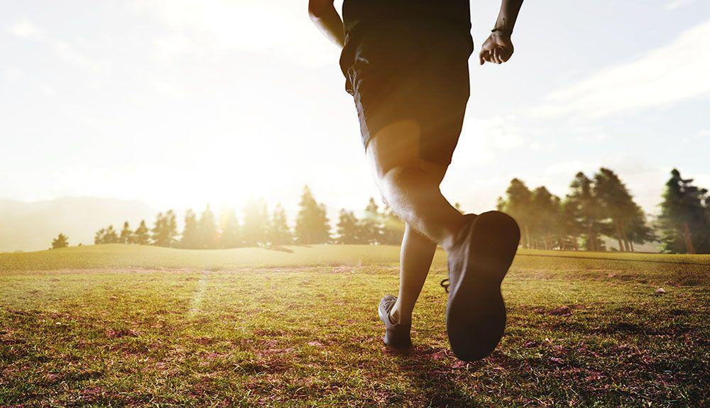 Deportes y aire libre
