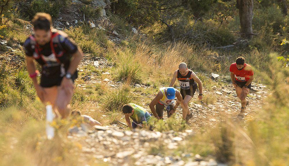 Siete consejos para un corredor de montaña