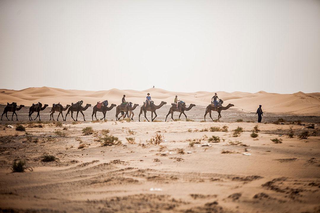 Mucho más que una carrera por el desierto
