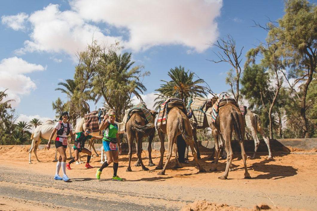 ¿Quieres ganar un viaje para correr los 100km del Sahara?
